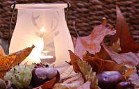 Tipy na jesenné bývanie