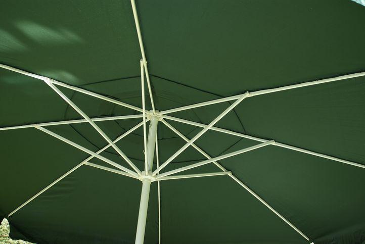 Slnečník - zelený, 4 m