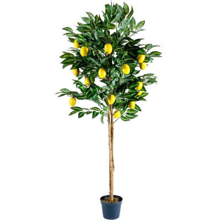 Umelý strom - citrónovník 184 cm