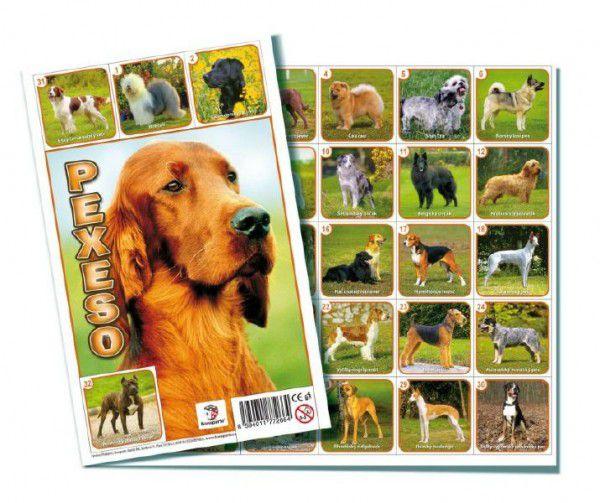 Pexeso Psi společenská hra 32 obrázkových dvojic