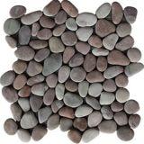 Kamienková mozaika Ocalla Berry 1x sieťka